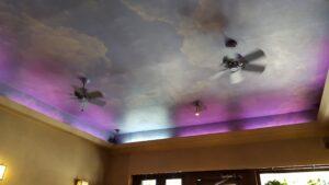 080417g Ayurveda Cafe ceiling