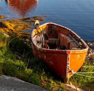 cove boat