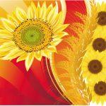sunfloweronredreversed